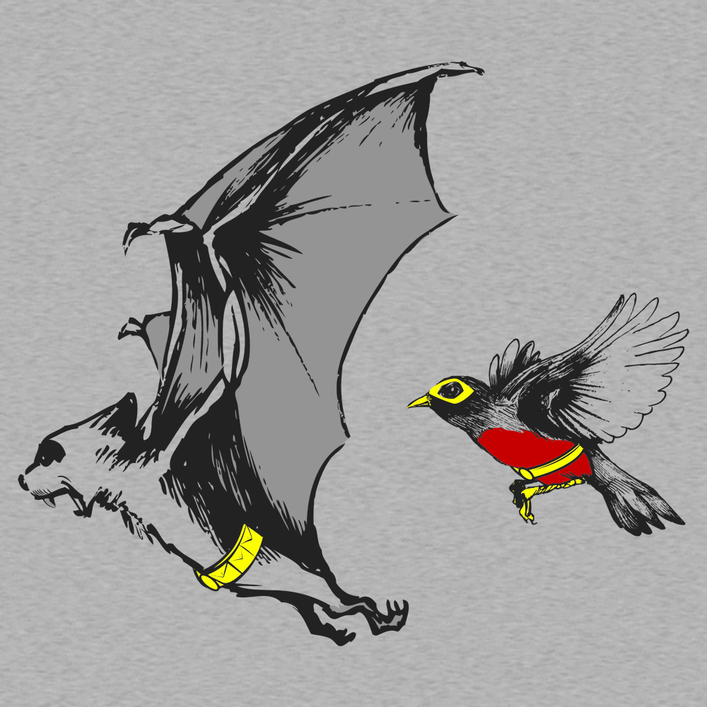 Bat And Robin