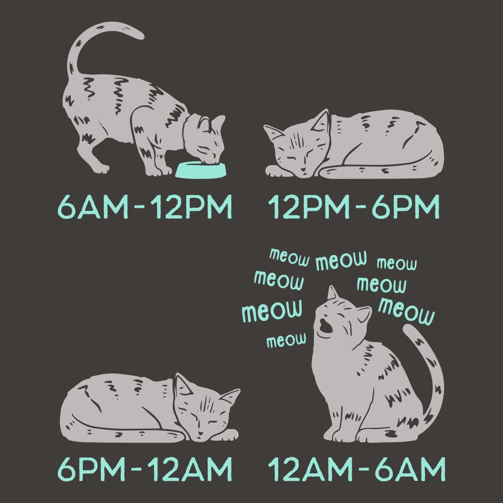 Cat Day Schedule
