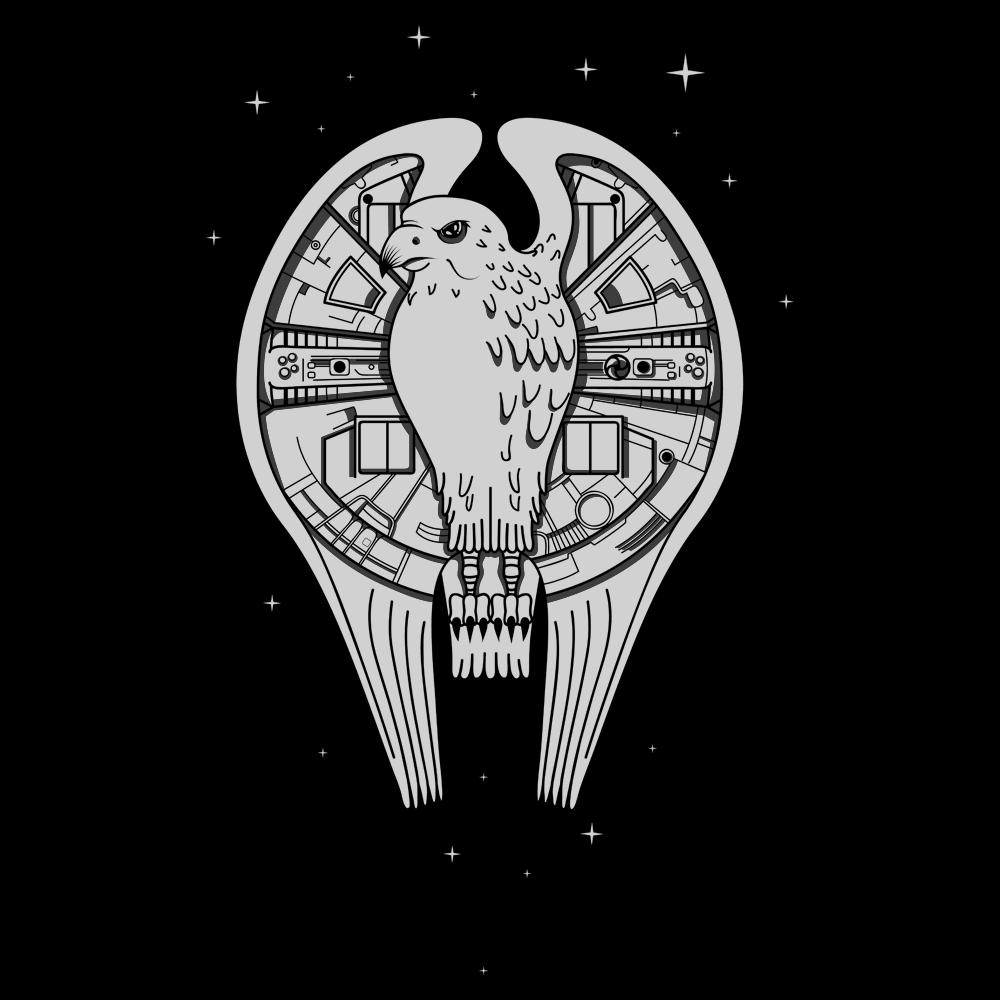 Fastest Falcon In The Universe