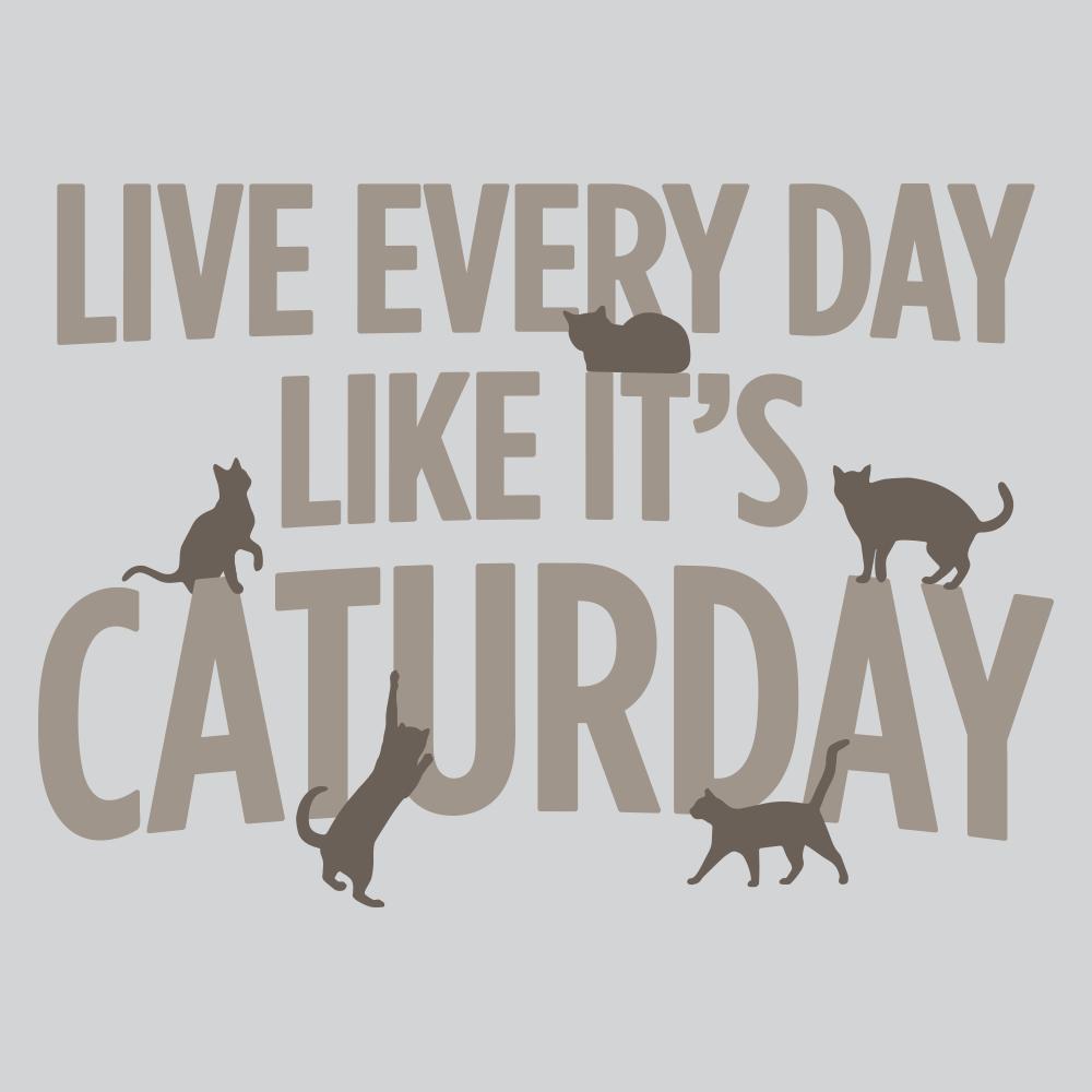 Résultats de recherche d'images pour «caturday»