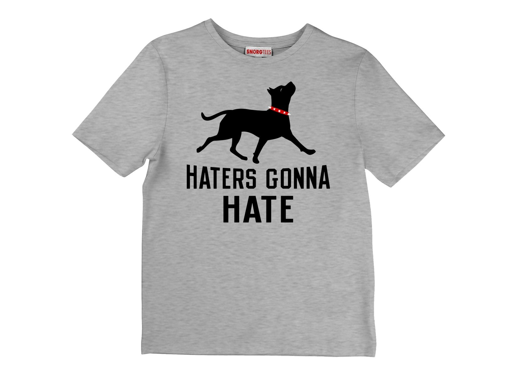 Haters Gonna Hate Pit on Kids T-Shirt