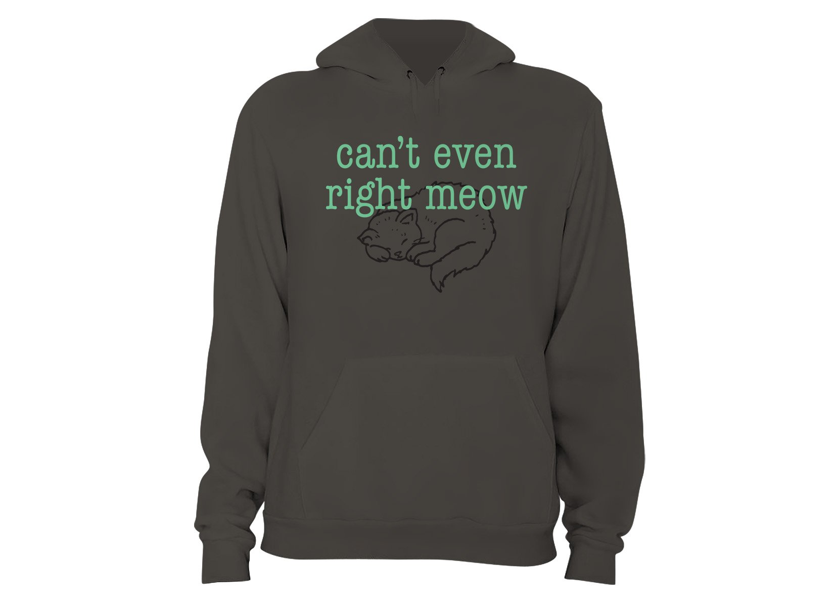 Can't Even Right Meow on Hoodie