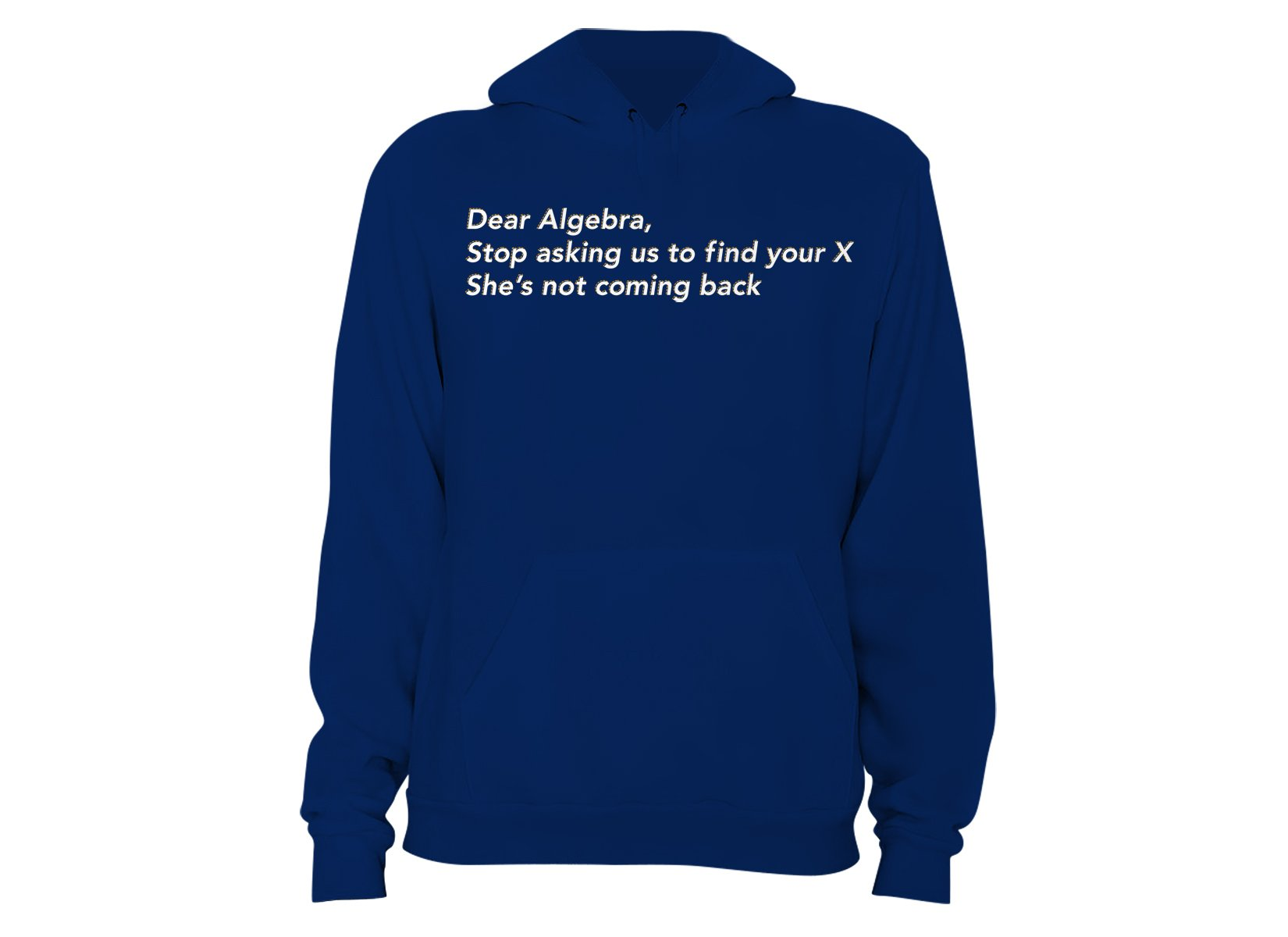 Dear Algebra, Stop Asking Us To Find Your X on Hoodie
