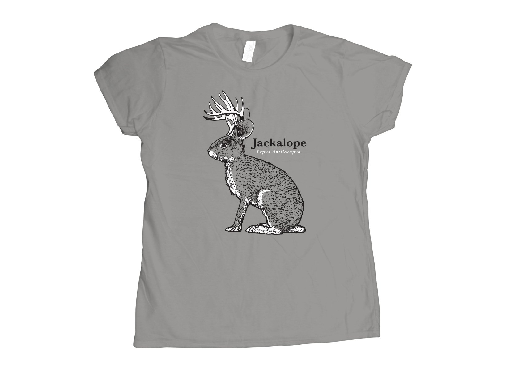 Jackalope on Womens T-Shirt