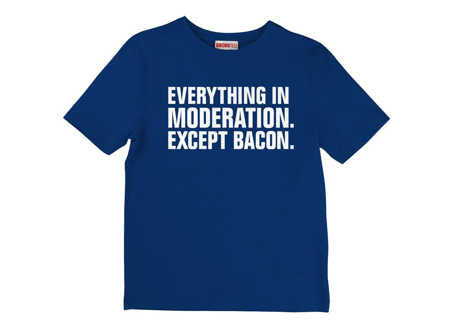 Everything In Moderation. Except Bacon. on Kids T-Shirt