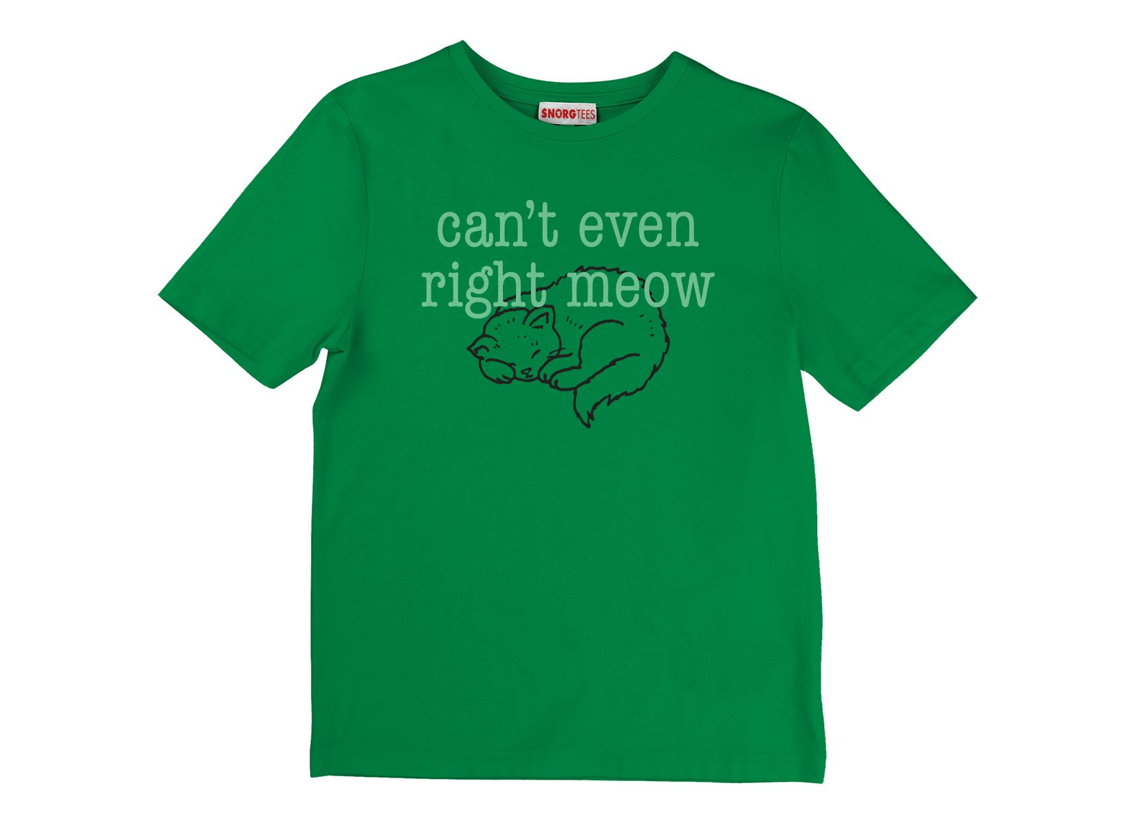 Can't Even Right Meow on Kids T-Shirt