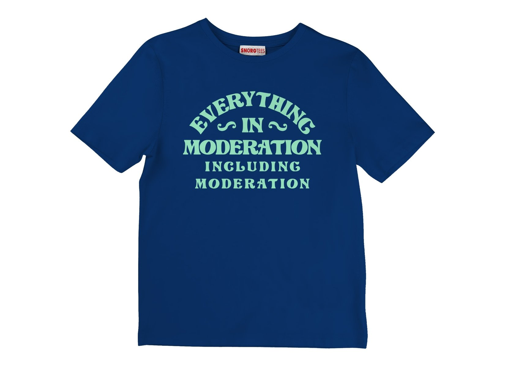 Everything In Moderation Including Moderation on Kids T-Shirt