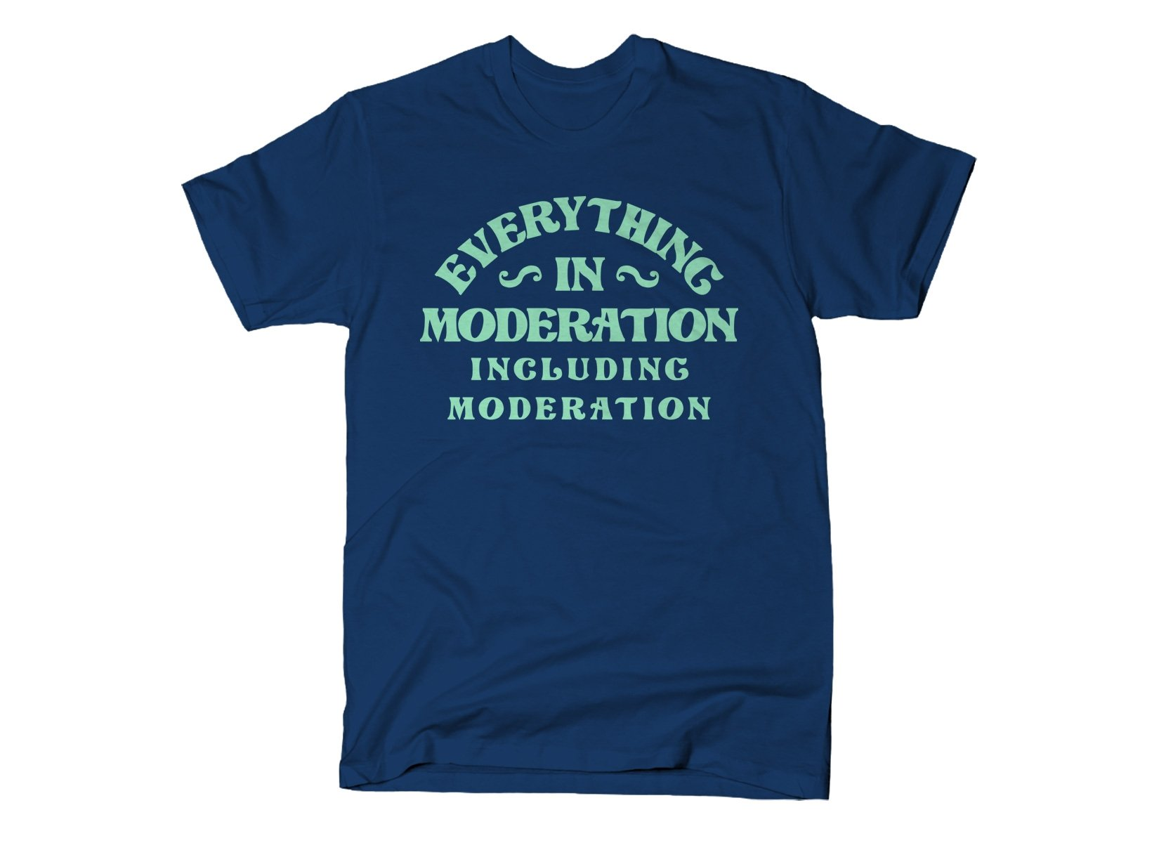 Everything In Moderation Including Moderation on Mens T-Shirt