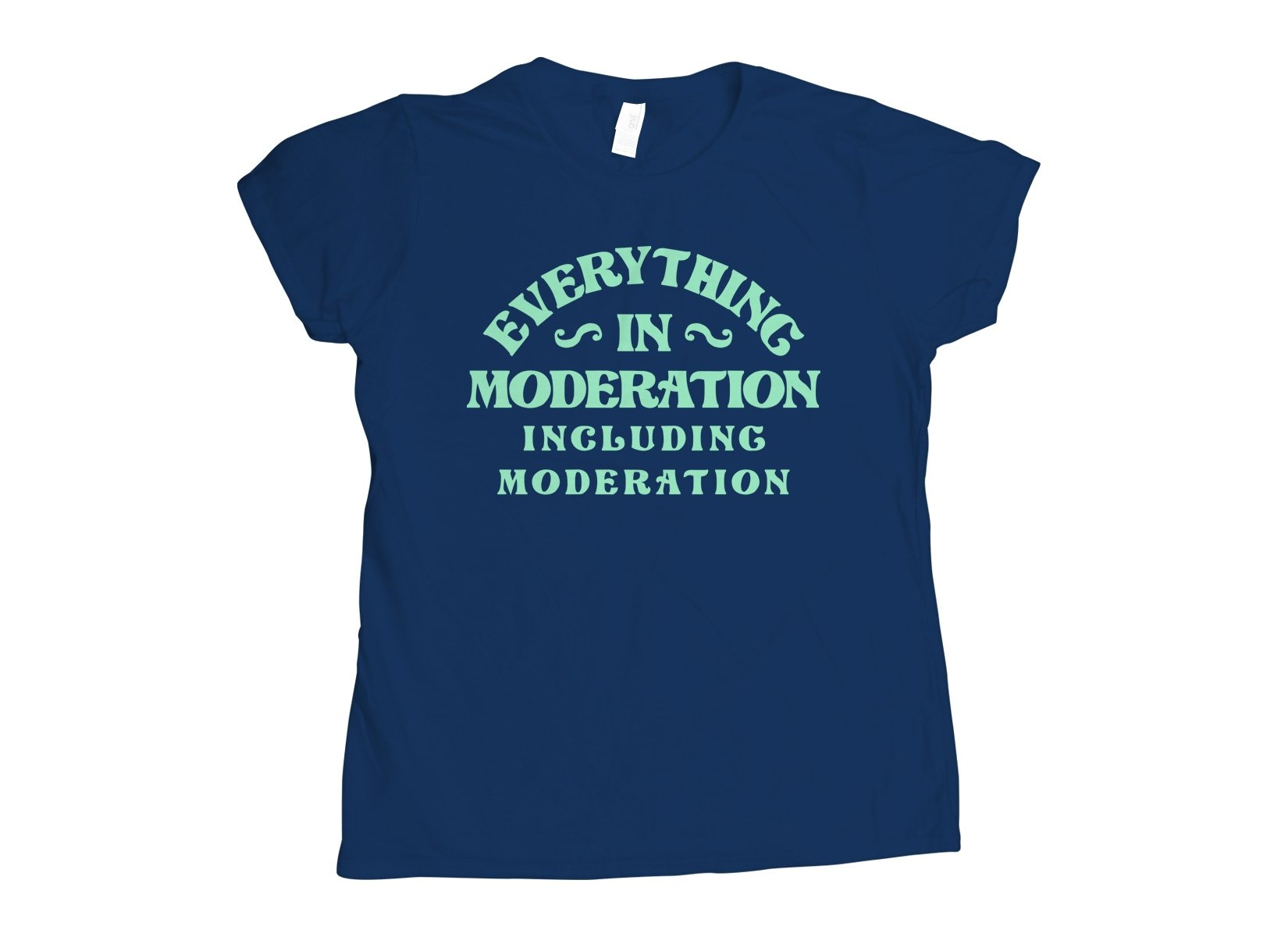 Everything In Moderation Including Moderation on Womens T-Shirt