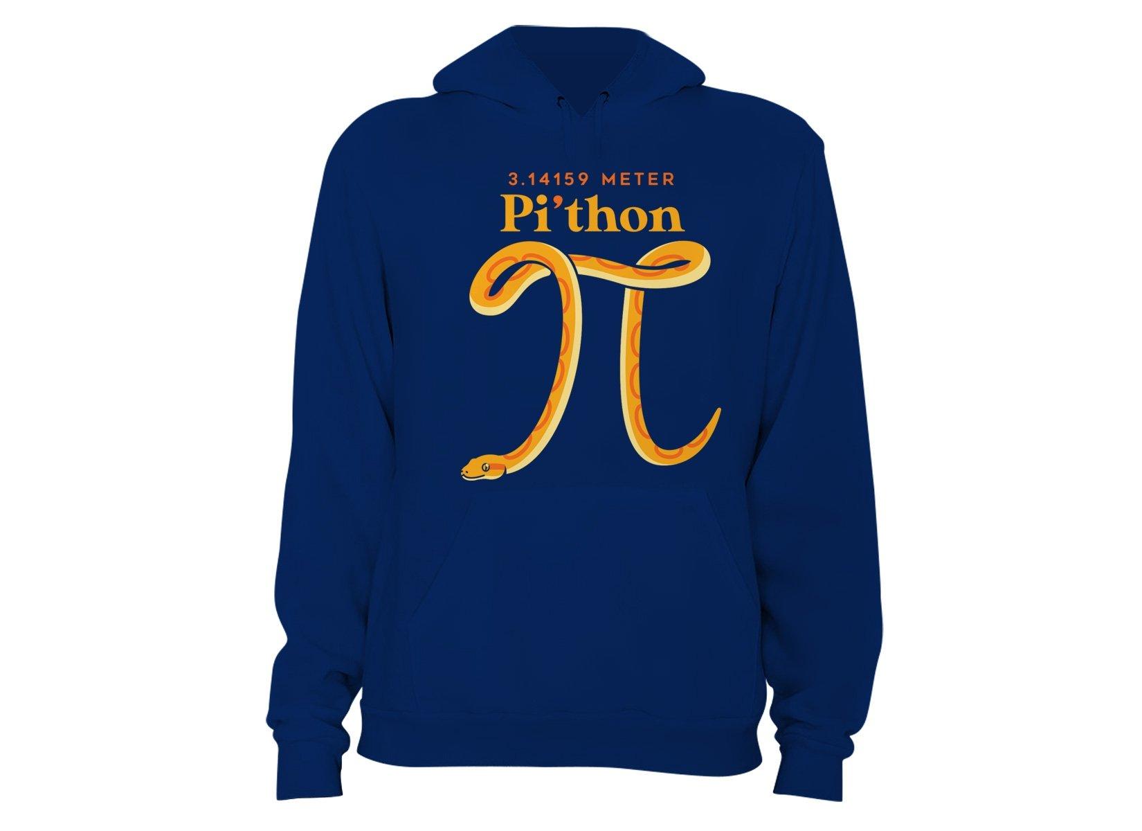 Pi-thon on Hoodie
