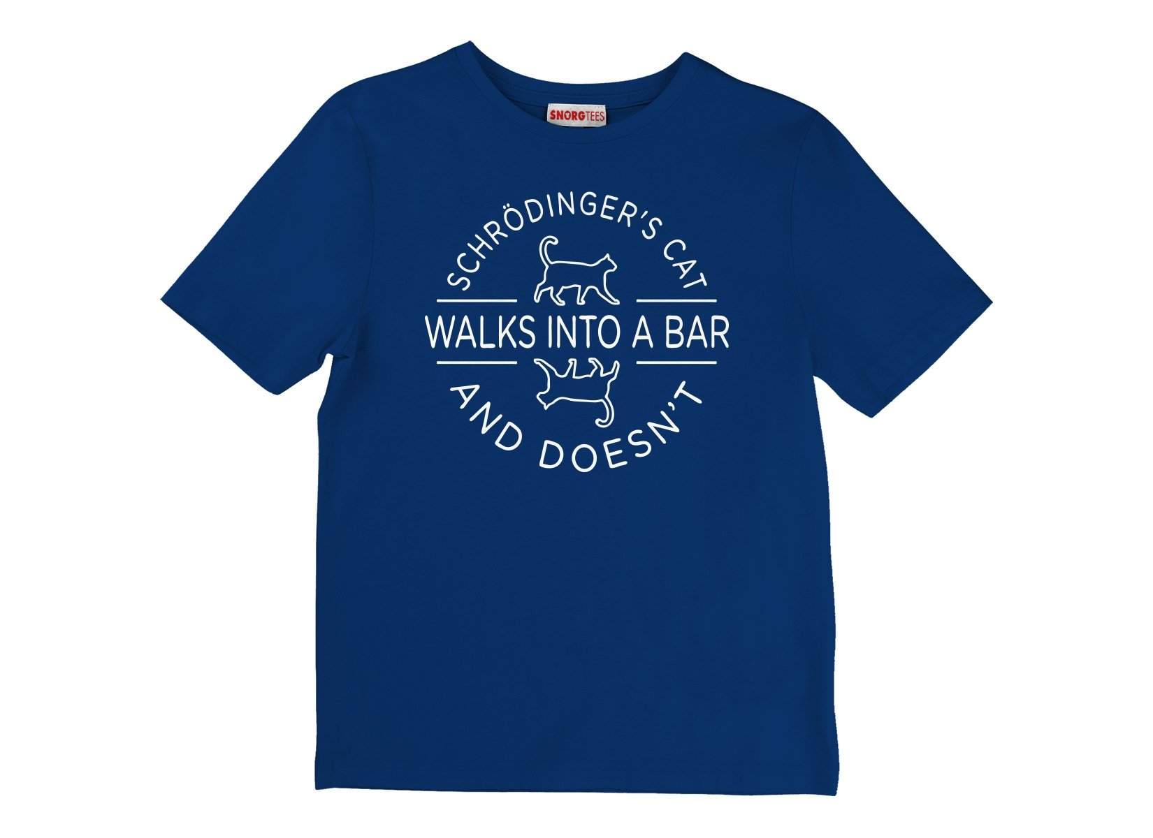 Schrodinger's Cat Walks Into A Bar on Kids T-Shirt