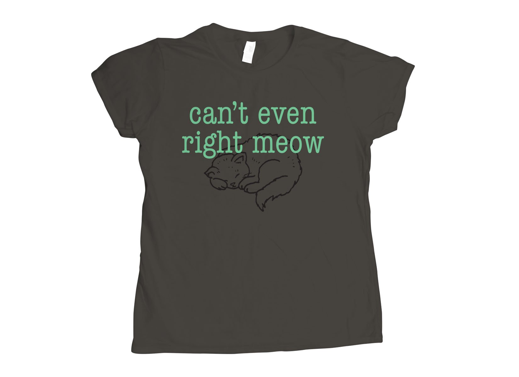 Can't Even Right Meow on Womens T-Shirt