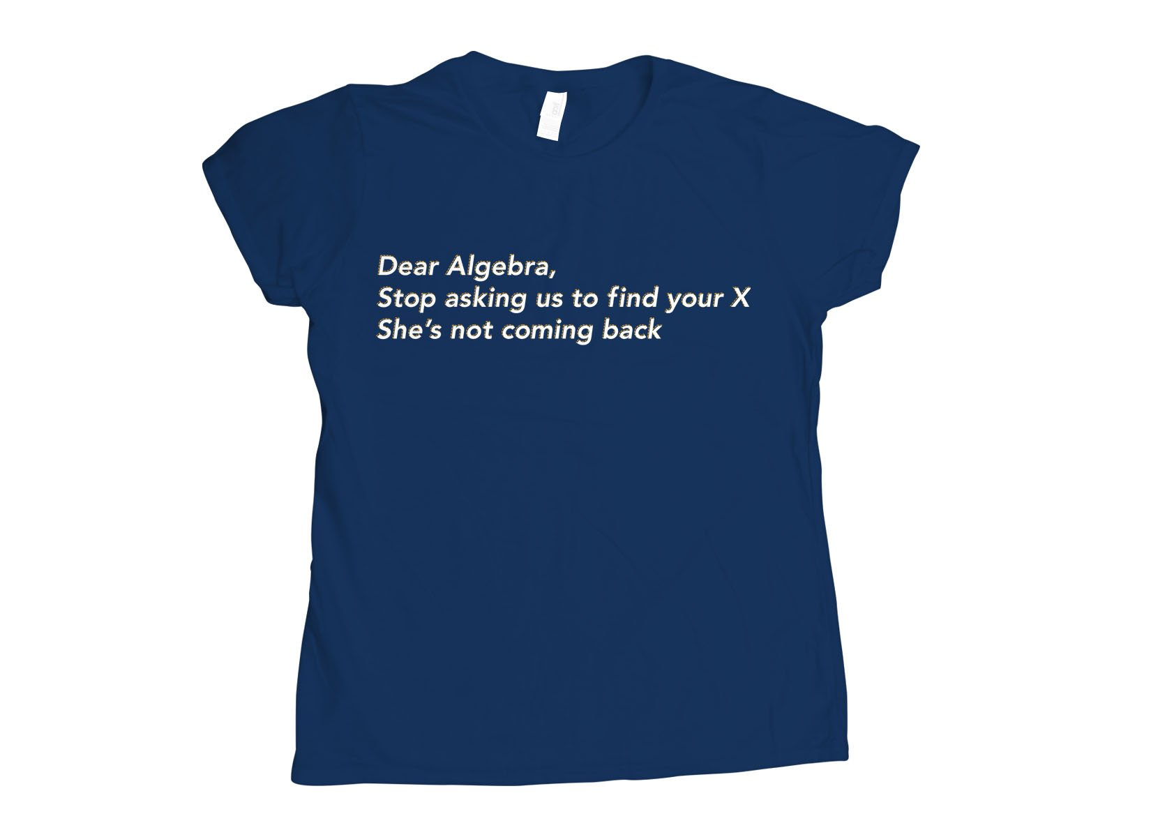 Dear Algebra, Stop Asking Us To Find Your X on Womens T-Shirt
