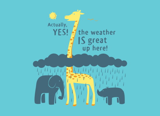 The Weather Is Great Up Here! on Juniors T-Shirt