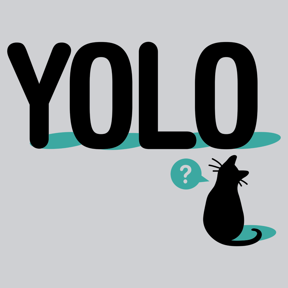 YOLO Cat T-Shirt