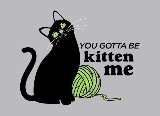 You Gotta Be Kitten Me on Mens T-Shirt