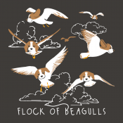 Flock Of Beagulls
