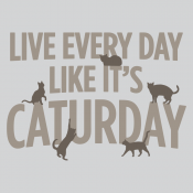Live Every Day Like It's Caturday