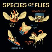 Species Of Flies