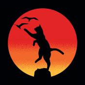 The Karate Cat