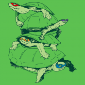 Masked Turtles