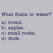 What Floats In Water?