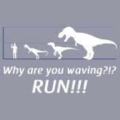 Why Are You Waving? Run!