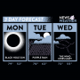 3 Day Forecast artwork