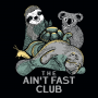 The Ain't Fast Club artwork