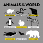 Animals Of The World artwork