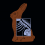 Bunny X-Ray artwork
