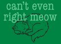 Can't Even Right Meow artwork