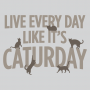 Live Every Day Like It's Caturday artwork
