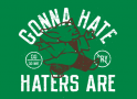 Gonna Hate Haters Are artwork