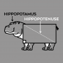Hippopotenuse artwork