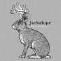 Jackalope artwork