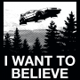 I Want To Believe artwork