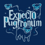 Expecto Pugtronum artwork
