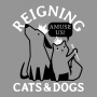 Reigning Cats And Dogs artwork