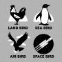Types Of Birds artwork