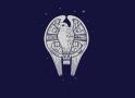 Fastest Falcon In The Universe artwork