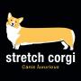 Stretch Corgi artwork