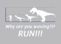 Why Are You Waving? Run! artwork
