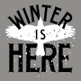 Winter Is Here artwork