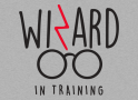 Wizard In Training artwork