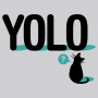 YOLO Cat artwork