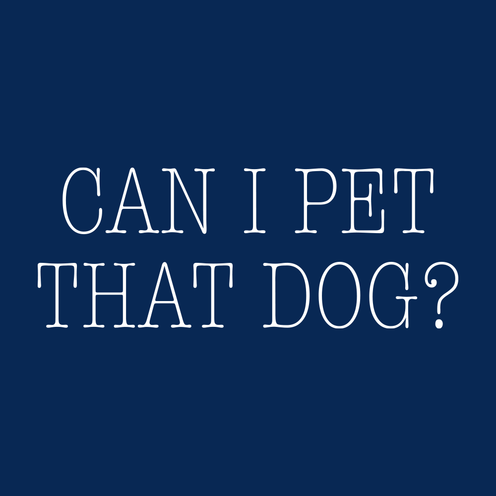 Can I Pet That Dog?