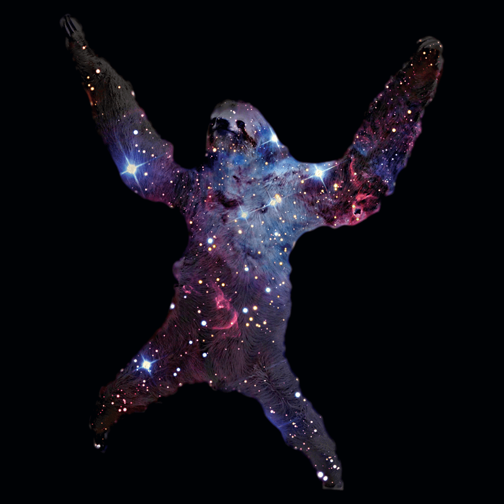 Sloth Nebula
