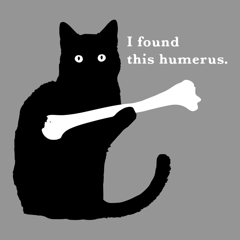 3c74ec778dea7 I Found This Humerus