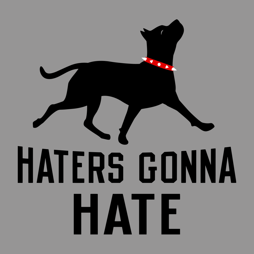 Haters Gonna Hate Pit